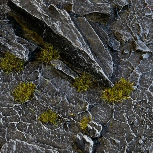 Gamers Grass Tiny Tufts Dark Moss